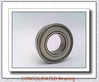 CONSOLIDATED BEARING GE-90 ES-2RS  Plain Bearings