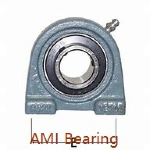 AMI UCLP212-38C4HR23  Mounted Units & Inserts #2 image