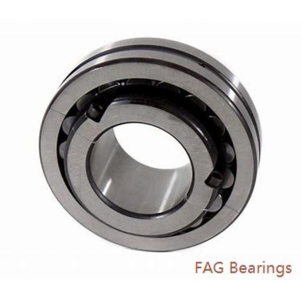 FAG 6007-Z  Single Row Ball Bearings #1 image