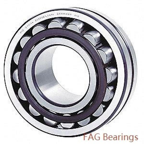 360 mm x 600 mm x 243 mm  FAG 24172-E1  Roller Bearings #1 image