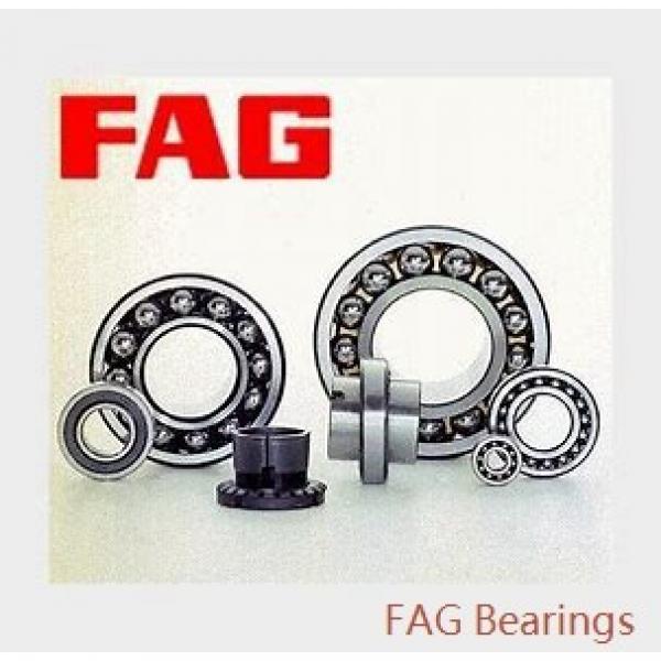 360 mm x 600 mm x 243 mm  FAG 24172-E1  Roller Bearings #2 image